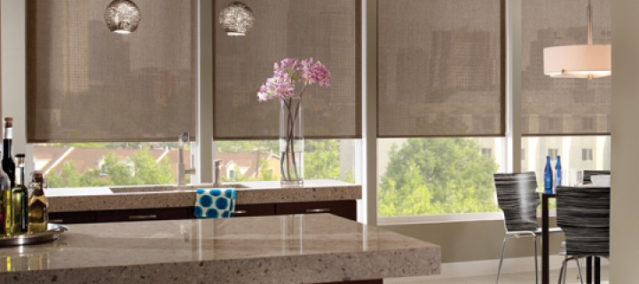 Envision Roller Shades by Comfortex